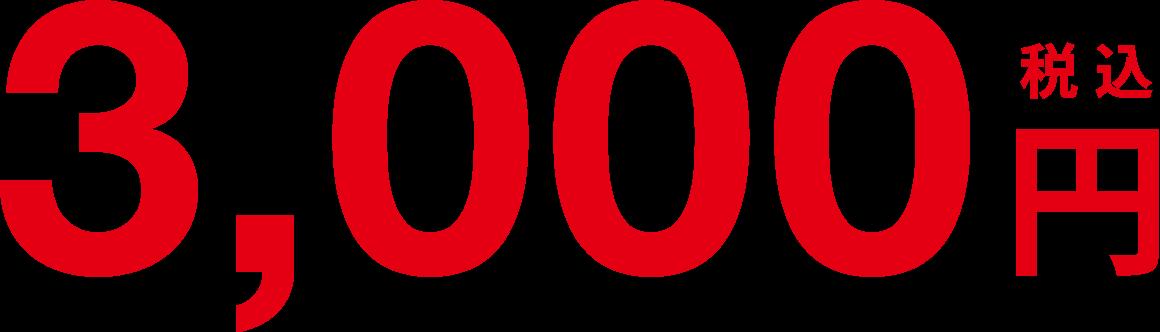 3,000円税込